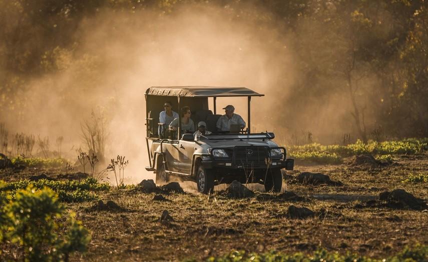 Classic Kafue National Park Safari
