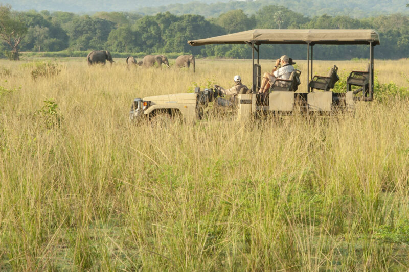 Zambia safari holiday